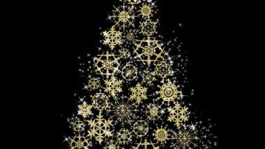 L'albero di Natale di Carita