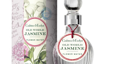 80453 Old World Jasmine Packshot LR