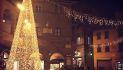Albero di Natale a Cortona