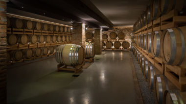 azienda-vitivinicola-montalbera_2