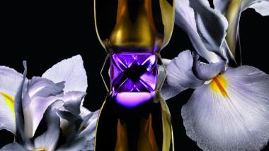 Manifesto Le Parfum YSL